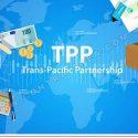 Organizaciones de México, Chile y Perú opositoras al TPP